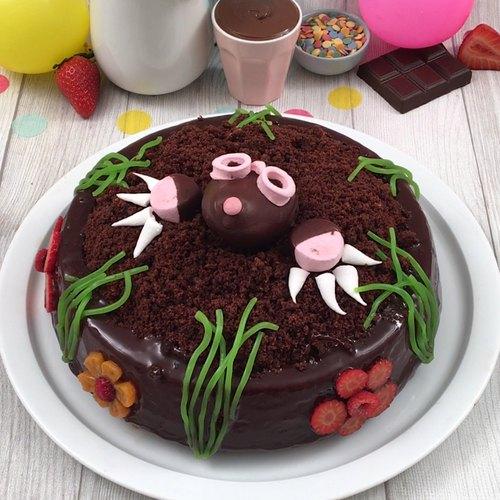 Le gâteau chocolat myope...