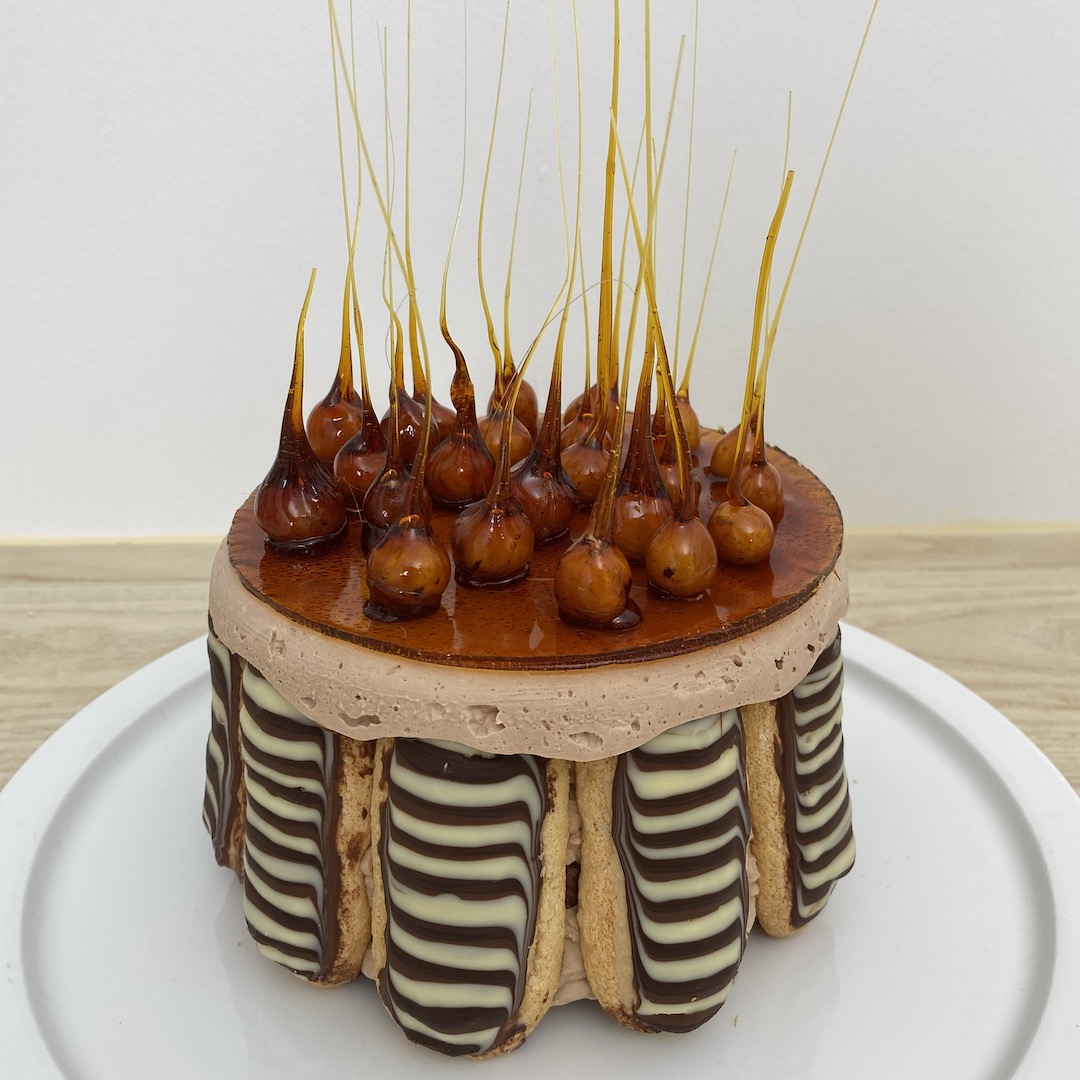 Charlotte royale chocolat praline
